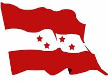 सबै स्थानीय तहमा कांग्रेसको विरोध प्रदर्शन